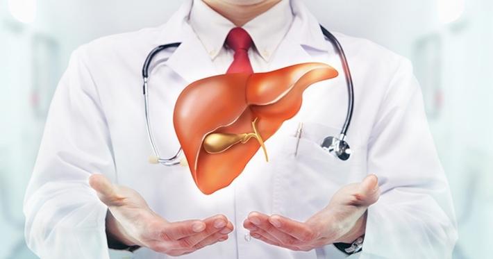 gan tạo ra được 80% amino acid cần thiết từ chất đạm ta ăn vào